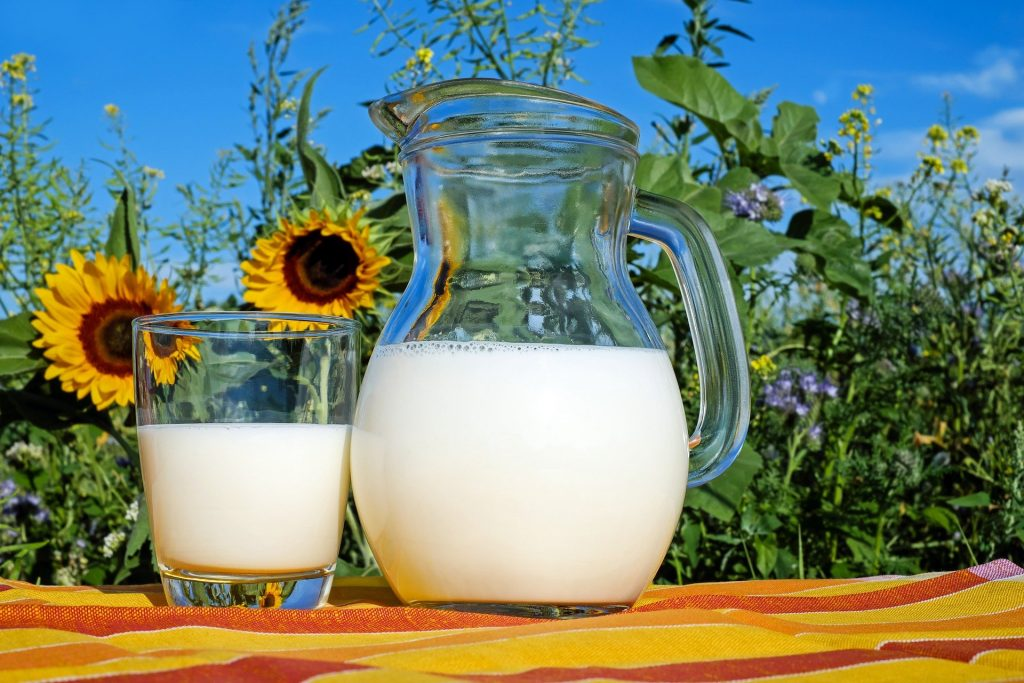 Le lait de vache en naturopathie.
